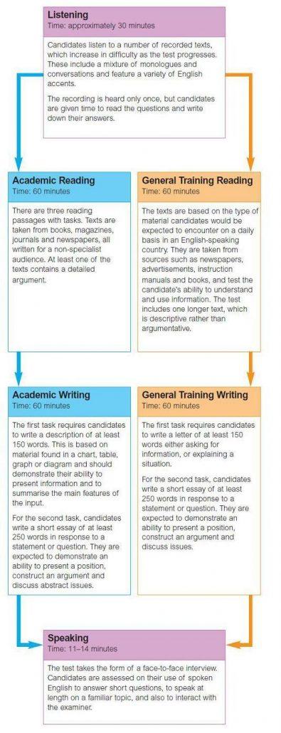 IELTS TOEFL Courses