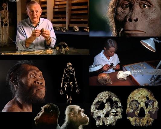 دانلود مستند میمونی که کنترل جهان را به دست گرفت
