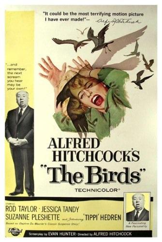 دانلود فیلم پرندگان هیچکاک زبان اصلی