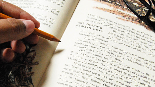 در نمره ریدینگ آیلتس لغت تاثیرگذارتر است یا تست زدن؟